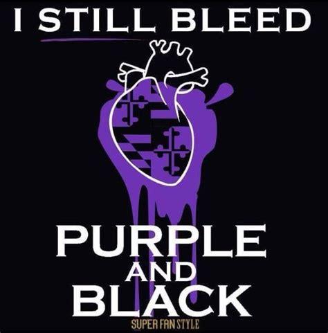 Baltimore Ravens Memes - 163 best memes images on pinterest baltimore ravens