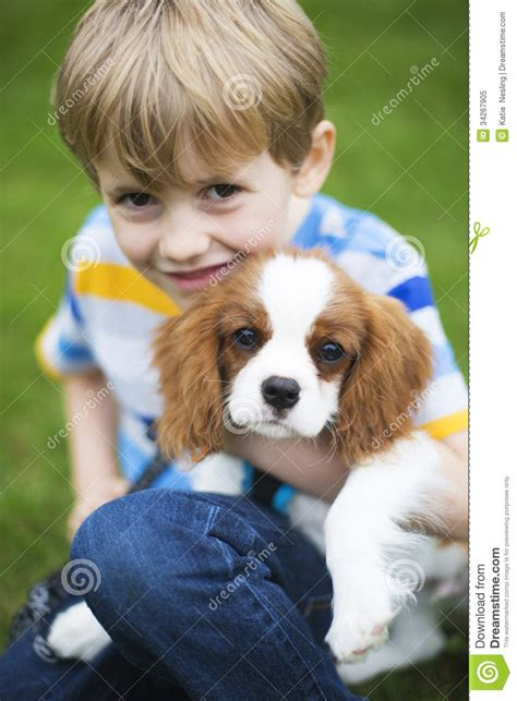 learn to read with bat boy and pup a dolch sight word book bat boy and pup level 2 k 2nd grade books boy with pet king charles spaniel puppy royalty free stock
