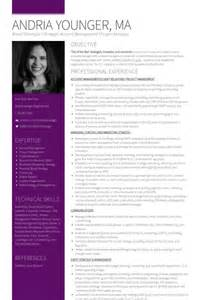 Brand Consultant Sle Resume by Consulting Resume Resume Format Pdf