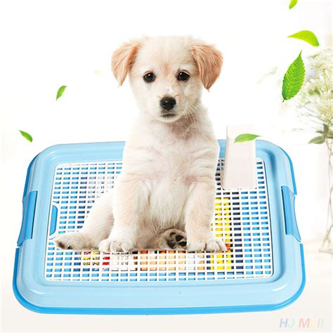 my potty trained dog is peeing in the house portable pet dog puppy indoor restroom training potty pee toilet fence tray pad in dog