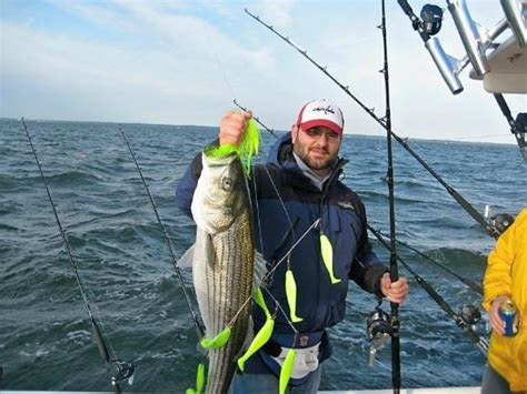 fishing boat charter chesapeake bay chesapeake bay fishing charters rockfish striped bass