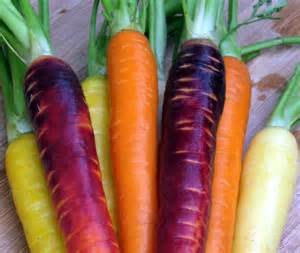 colorful carrots cook food mostly plants roasted carrots with cumin seeds