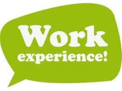 What Type Of Work Experience Is Required For Mba by Work Experience Dustin Radowits