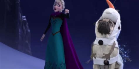 doug the doug the pug joins elsa in disney s frozen huffpost uk