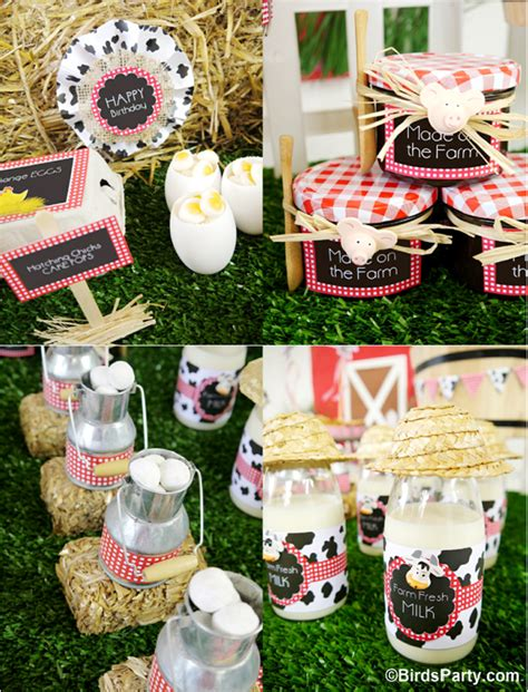Barn Animal Party Supplies My Kids Joint Barnyard Farm Birthday Party Party Ideas
