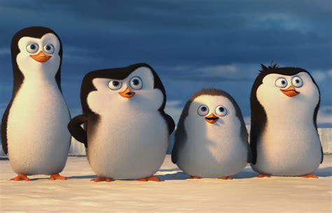 wann kommt die pinguine aus madagascar ins kino die pinguine aus madagaskar filmkritik