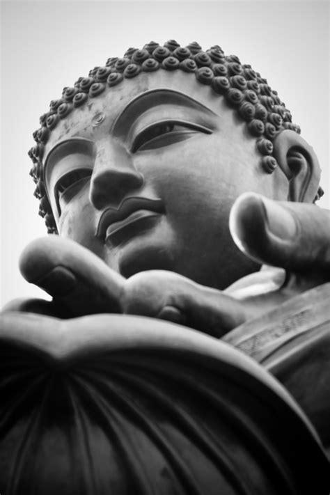 wallpaper iphone 6 buddha buddha canvas of light photography