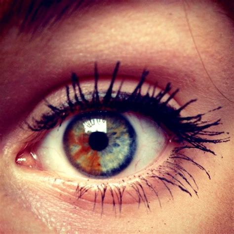 two different colored meaning 7 best images about heterochromia iritis two different