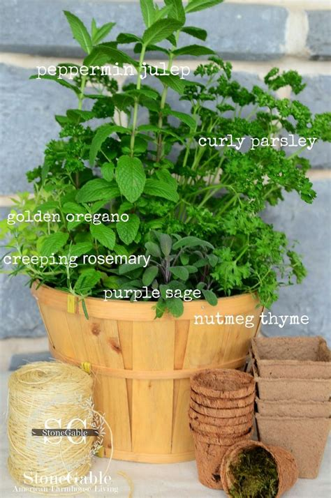 kitchen herb garden kitchen herb garden in a basket gardens small kitchens