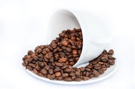 Coffee Di Coffee Bean 무료 사진 커피 콩 커피 음료 카페인 양조 커피 메이커 레스토랑 pixabay의 무료
