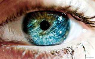 eye colors science your eye color reveals a lot about you the mind