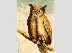 Vintage Owl Drawing - ReusableArt.com Free Black And White Clip Art Letters