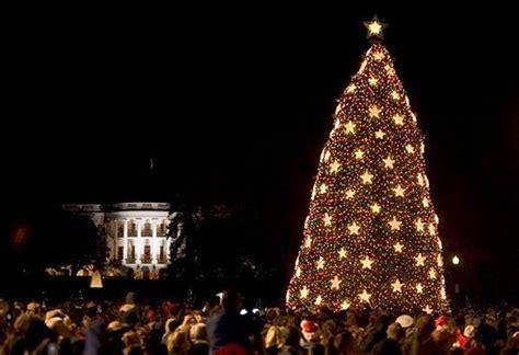 file us national christmas tree 2004 jpg 维基百科 自由的百科全书