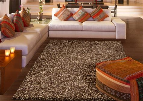 adorable shag area rugs  chic living room