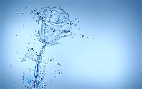 hd creativity water spray drops flower rose desktop images
