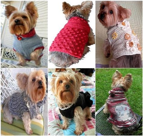 yorkie clothes patterns sweaters diy and free crochet on