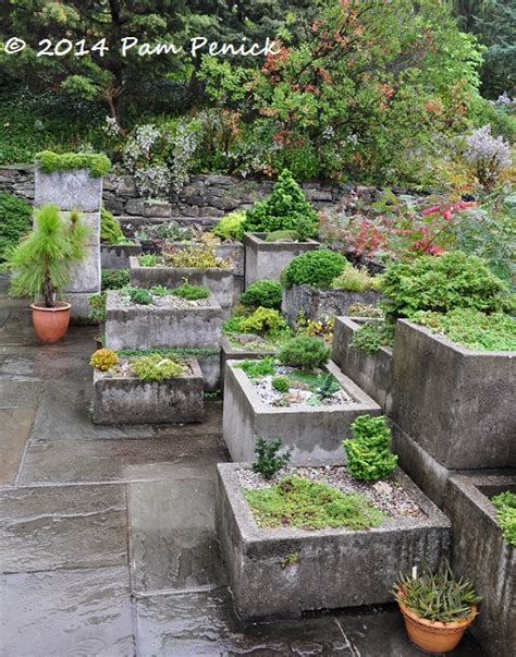 Alpine Planters by Tropicals Digging