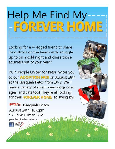 dog adoption flyer template pup rescue flyers portfolio walls