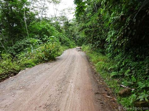 la selva overlanding la selva peru s enormous amazon rainforest dare2go