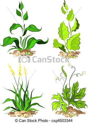 desenho de plantas desenhos plantas veja aqui
