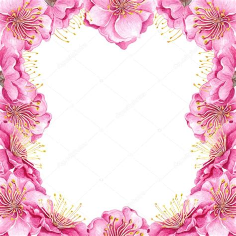 cornice di fiori cornice di fiori di pesco foto stock 169 kois00kois 125229518
