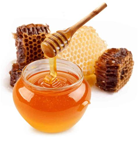 Madu Murni Bunga Randu Asli By Madu Plus jual madu asli jombang