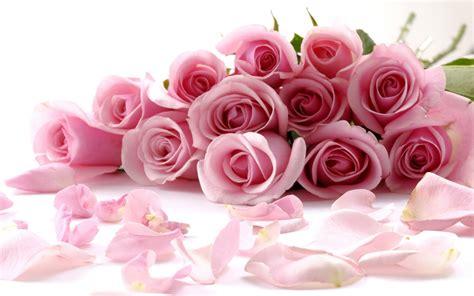 imagenes de rosas feliz dia delas madres feliz d 237 a de las madres