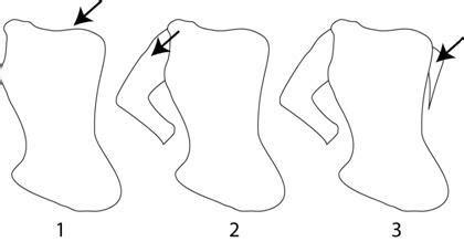 tutorial menggambar di adobe illustrator tutorial adobe illustrator belajar ilustrasi vector