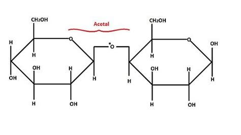 2 structural carbohydrates carbohydrates structural carbohydrates