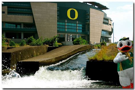 Cost Of Mba At Osu by Osu Webcams Oregon State Autos Post