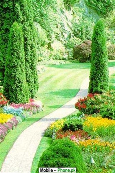 green garden wallpapers mobile pics