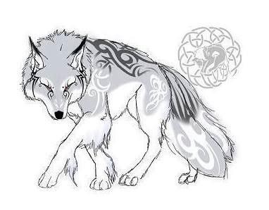 Anime White Wolf Photo by Hikari sun goddess   Photobucket