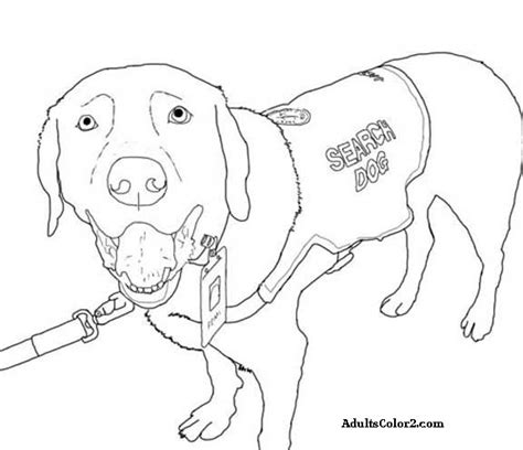 rescue dogs coloring pages working dogs crucial canines