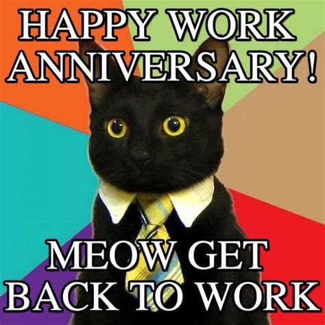 Happy Anniversary Meme - happy work anniversary business cat meme on memegen