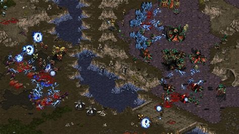 download full version game of starcraft starcraft brood war free download full version crack pc