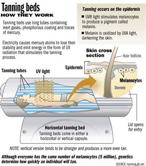 How Does Detox Bed Work by How Tanning Bed S Work Trusper