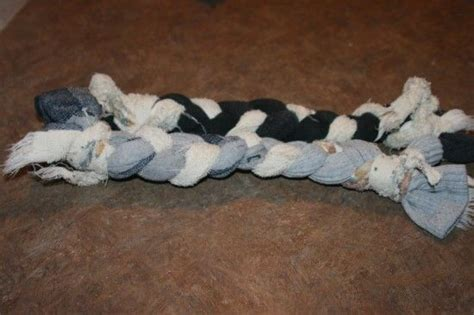 sock chew toys 37 best images about puppy toys on