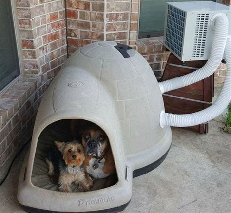 dog house with air conditioner 25 best ideas about air conditioned dog house on