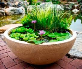 Aquascape Fountain Pond In A Pot Create A Container Water Garden Balcony