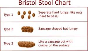 90 separate lumps stool bristol stool scale