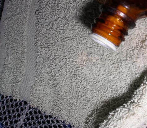 hausmittel gegen motten im schrank hausdesign motten im schrank kleine home design ideas