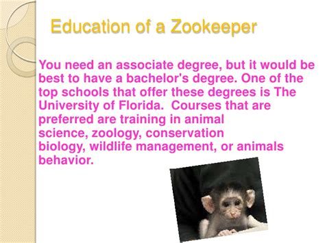 Zookeeper Education by How To Become A Zookeeper By Avery