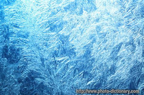 fern frost back yard biology frost