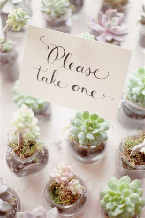 cute succulents 35 cute and easy to make wedding favor ideas favors
