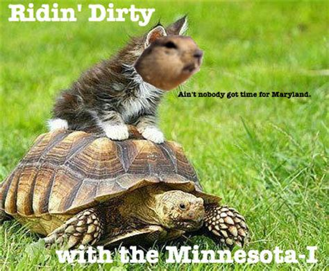 Gopher Meme - gopher football meme madness sweet 16 gold region 1 vs