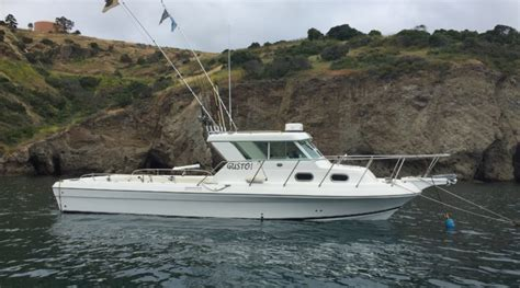 charter boat to catalina island afishinados introduces a new charter service with gusto