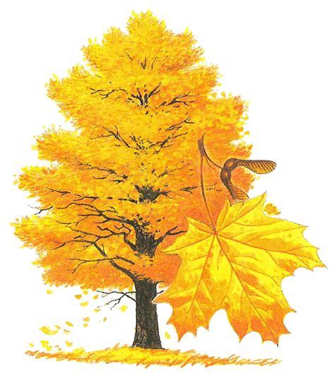 maple tree symbolism state symbols