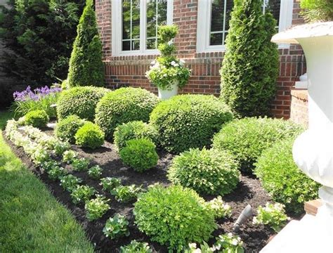 Landscape Ideas Hedges Landscaping With Shrubs Bringing Shape And Color Into