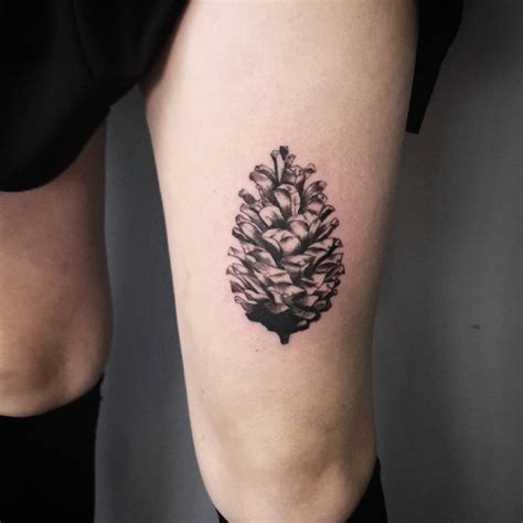 pine cone tattoo 75 simple and easy pine tree designs meanings
