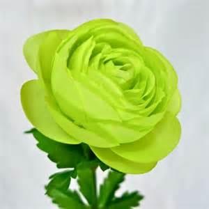 Vases And Artificial Flowers Fleur Artificielle Renoncule Verte